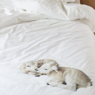 Snurk 100% and Wool dekbedovertrek 1-persoons
