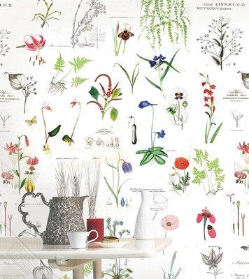 Onszelf Loft Posterbehang - Flora