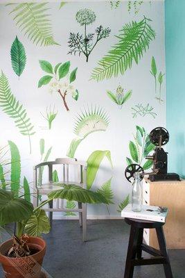 Onszelf Loft Posterbehang - Green botanical