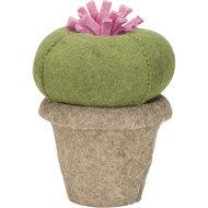 kidsdepot cactus queen